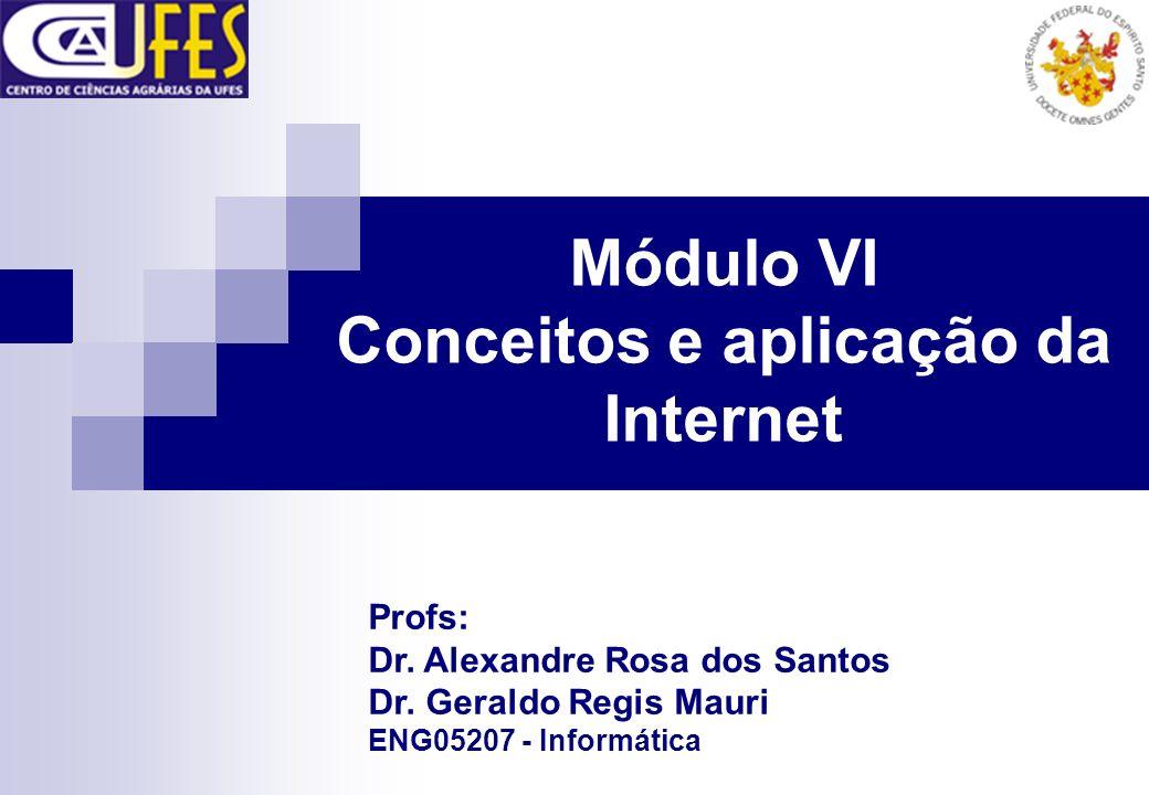 Módulo VI Conceitos e aplicação da Internet