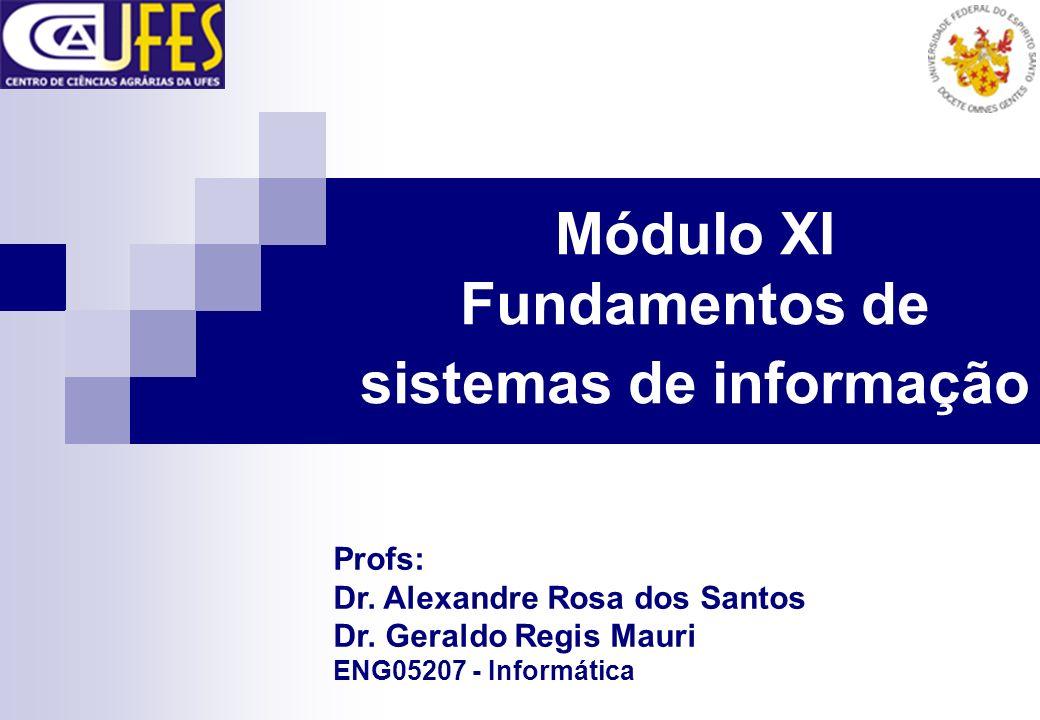 Módulo XI Fundamentos de sistemas de informação