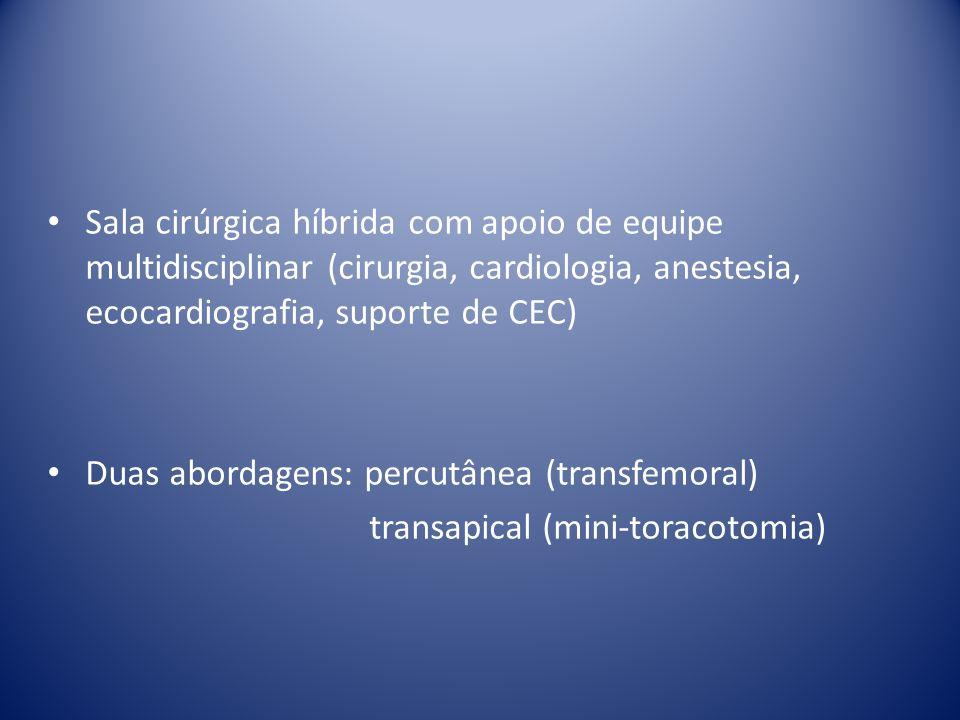 Duas abordagens: percutânea (transfemoral)