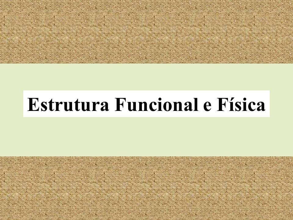 Estrutura Funcional e Física