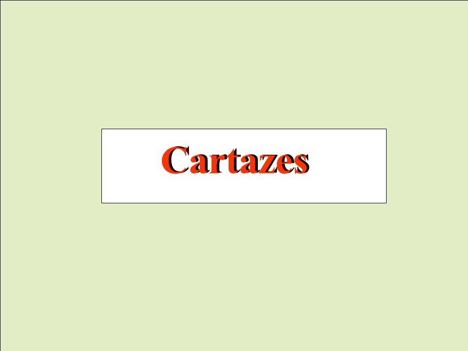 Cartazes