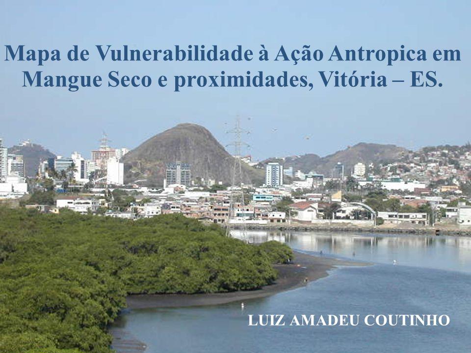Mapa de Vulnerabilidade à Ação Antropica em Mangue Seco e proximidades, Vitória – ES.