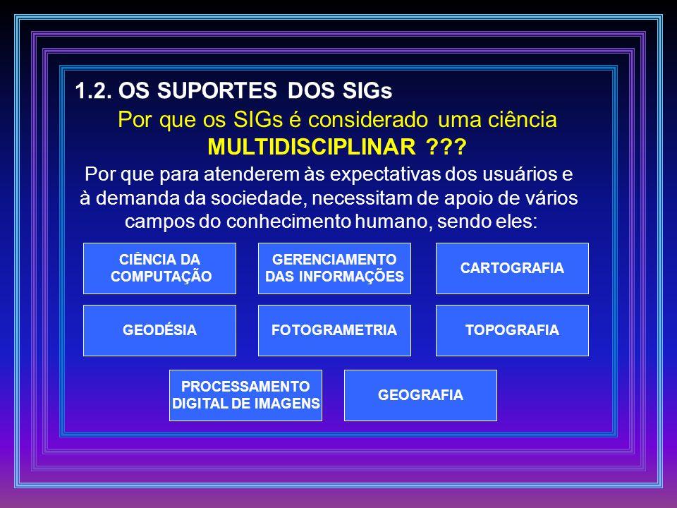 1.2. OS SUPORTES DOS SIGs MULTIDISCIPLINAR