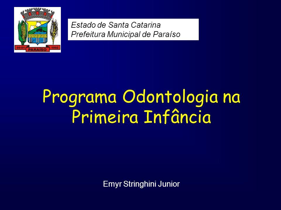 Programa Odontologia na Primeira Infância