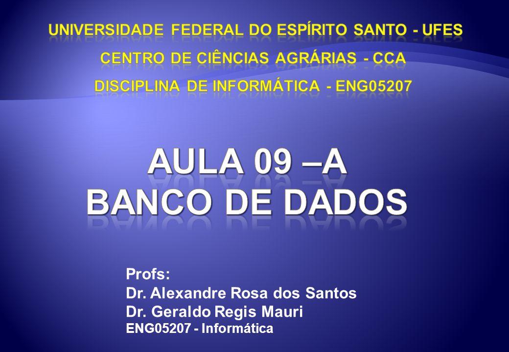 UNIVERSIDADE FEDERAL DO ESPÍRITO SANTO - UFES CENTRO DE CIÊNCIAS AGRÁRIAS - CCA DISCIPLINA DE INFORMÁTICA - ENG05207