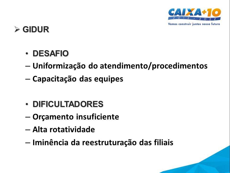 Uniformização do atendimento/procedimentos Capacitação das equipes