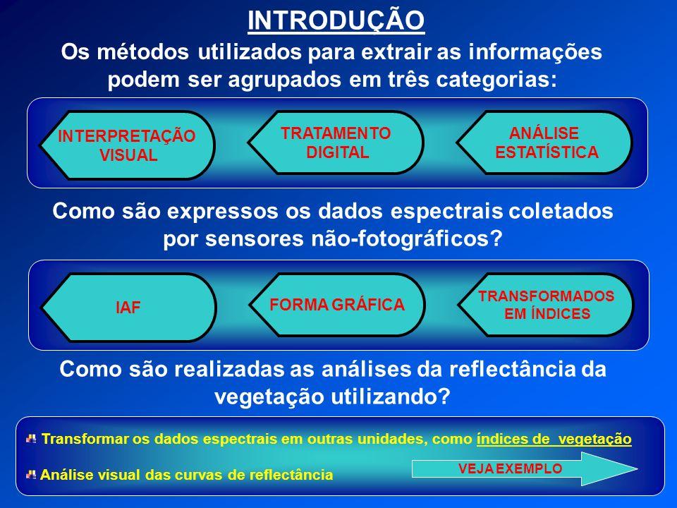 INTRODUÇÃO Os métodos utilizados para extrair as informações podem ser agrupados em três categorias: