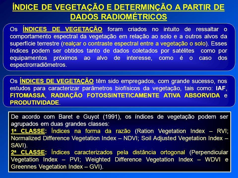 ÍNDICE DE VEGETAÇÃO E DETERMINÇÃO A PARTIR DE DADOS RADIOMÉTRICOS