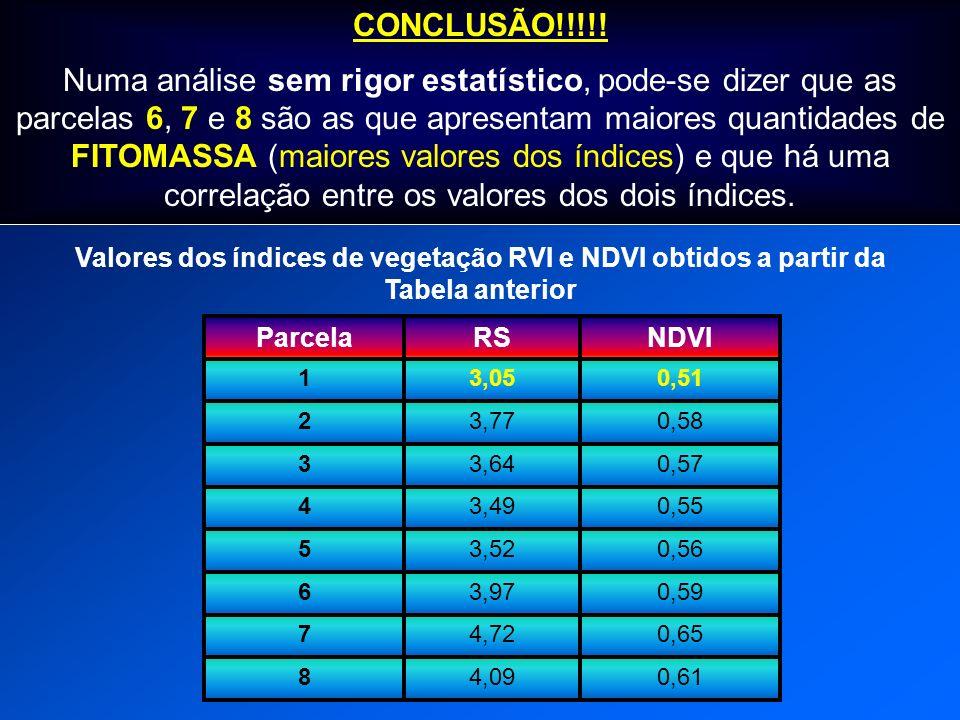 CONCLUSÃO!!!!!