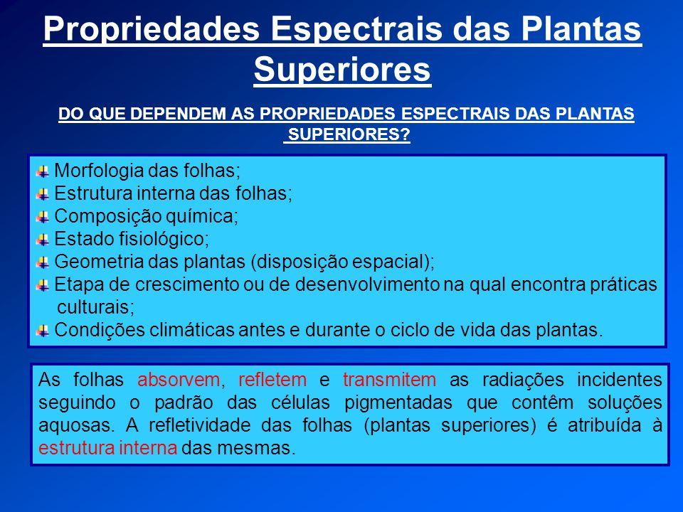 Propriedades Espectrais das Plantas Superiores