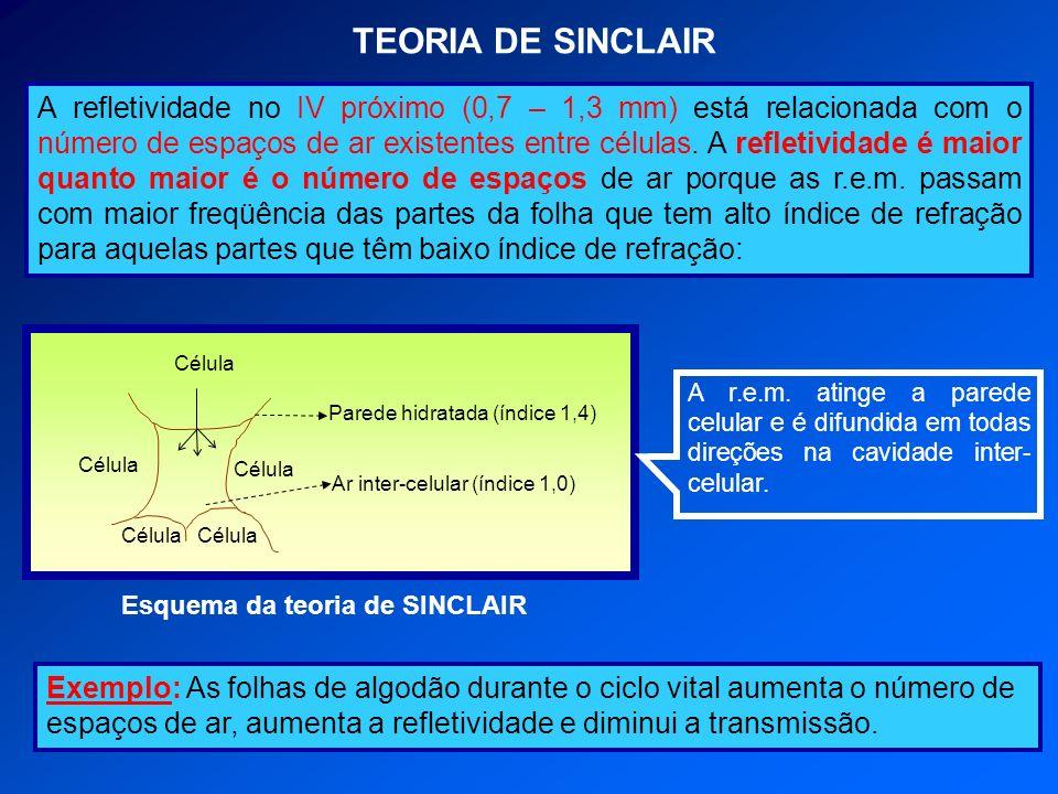 TEORIA DE SINCLAIR