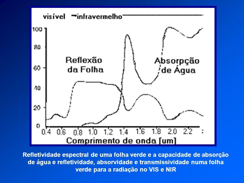 Refletividade espectral de uma folha verde e a capacidade de absorção de água e refletividade, absorvidade e transmissividade numa folha verde para a radiação no VIS e NIR