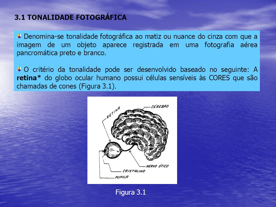 3.1 TONALIDADE FOTOGRÁFICA