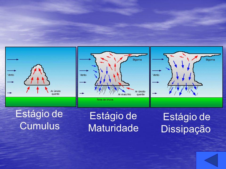 Estágio de Cumulus Estágio de Maturidade Estágio de Dissipação