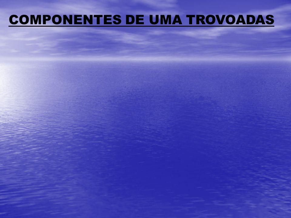 COMPONENTES DE UMA TROVOADAS
