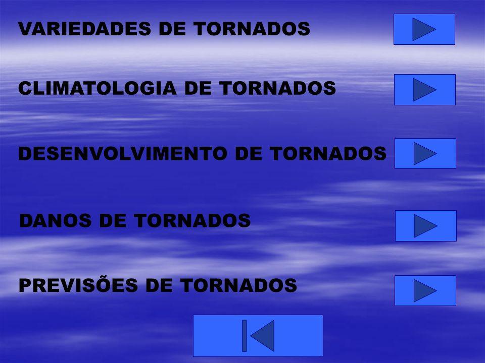 VARIEDADES DE TORNADOS