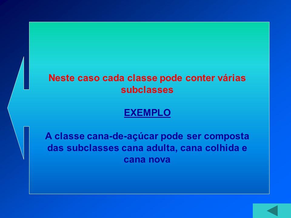 Neste caso cada classe pode conter várias subclasses