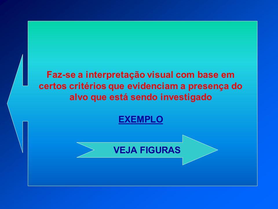 Faz-se a interpretação visual com base em certos critérios que evidenciam a presença do alvo que está sendo investigado