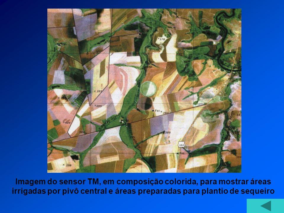 Imagem do sensor TM, em composição colorida, para mostrar áreas irrigadas por pivô central e áreas preparadas para plantio de sequeiro
