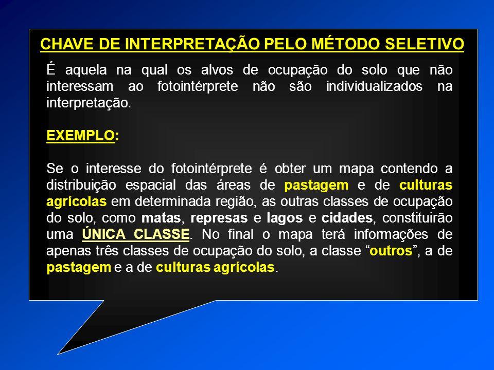 CHAVE DE INTERPRETAÇÃO PELO MÉTODO SELETIVO