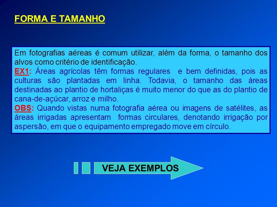 FORMA E TAMANHO VEJA EXEMPLOS