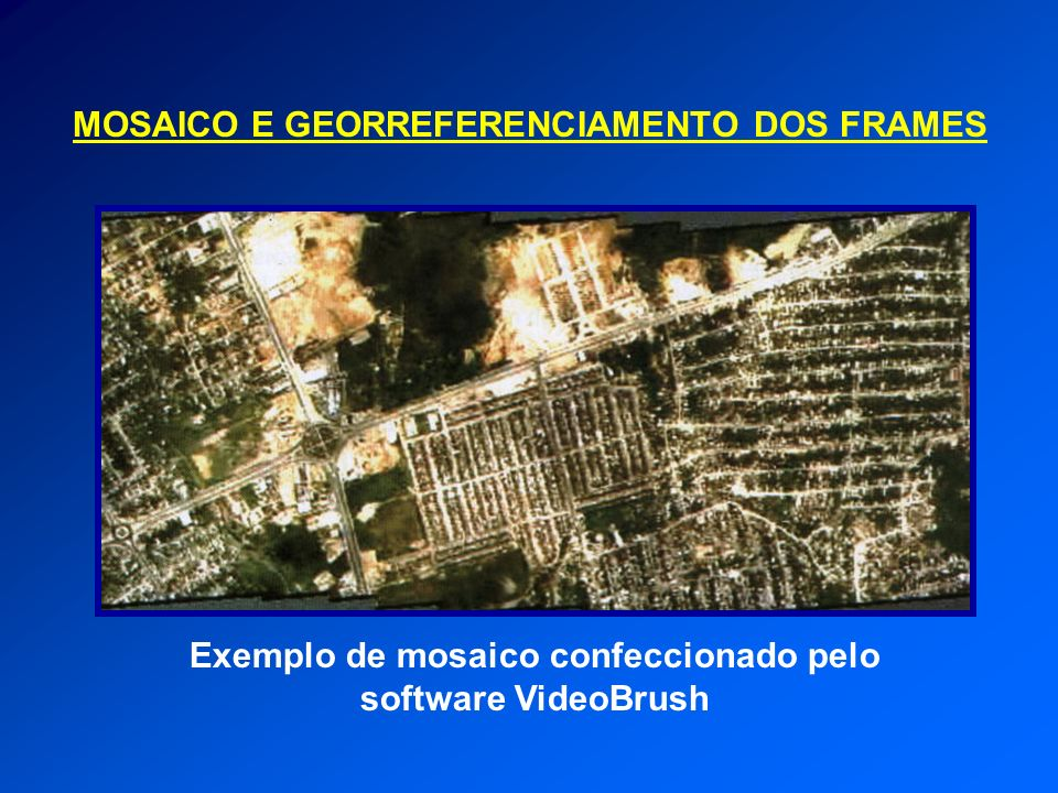 Exemplo de mosaico confeccionado pelo software VideoBrush