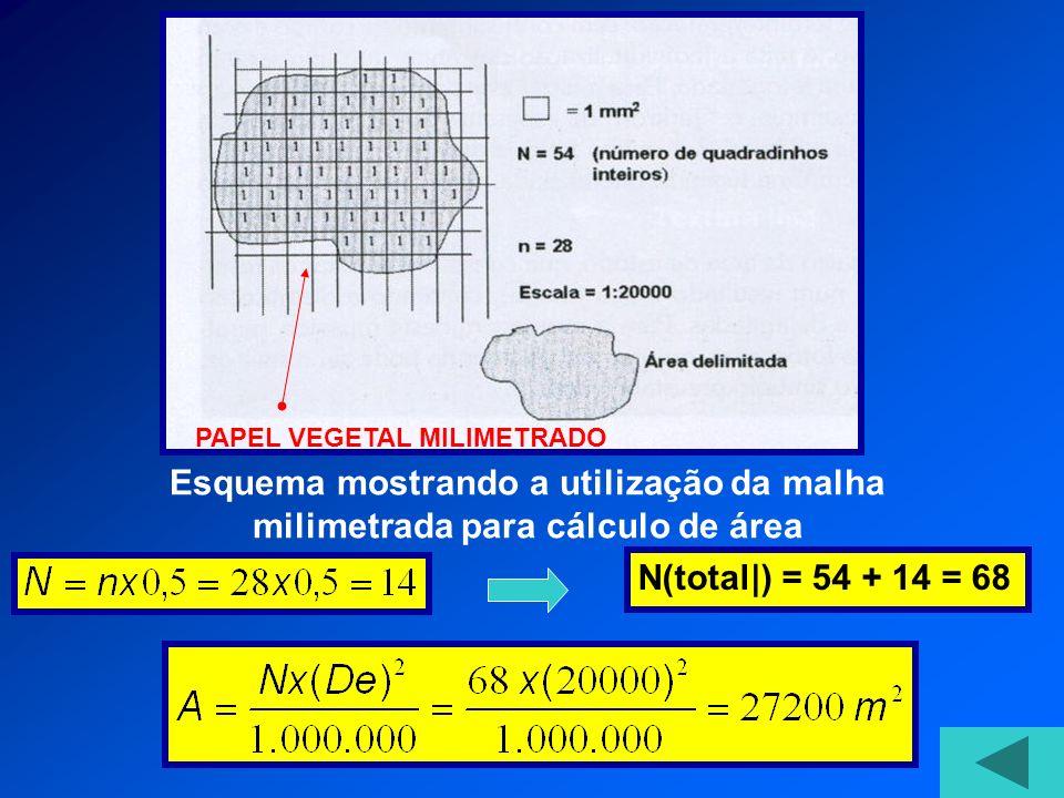 Esquema mostrando a utilização da malha milimetrada para cálculo de área