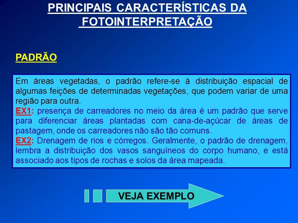 PRINCIPAIS CARACTERÍSTICAS DA