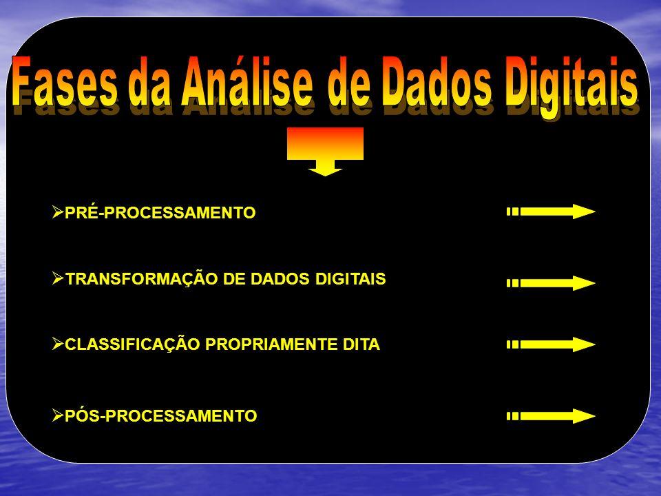 Fases da Análise de Dados Digitais