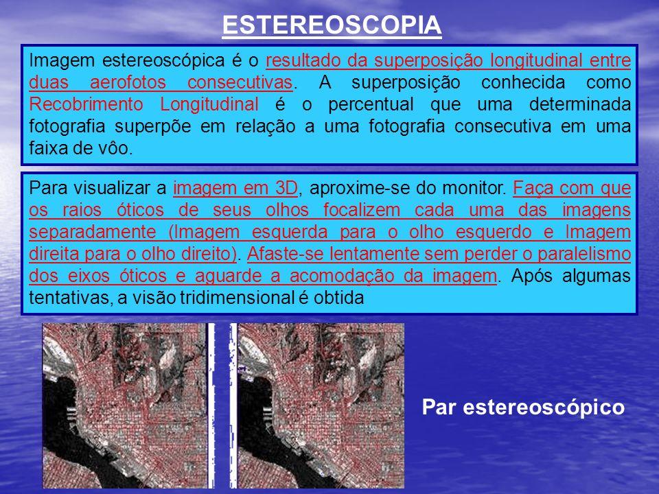 ESTEREOSCOPIA Par estereoscópico
