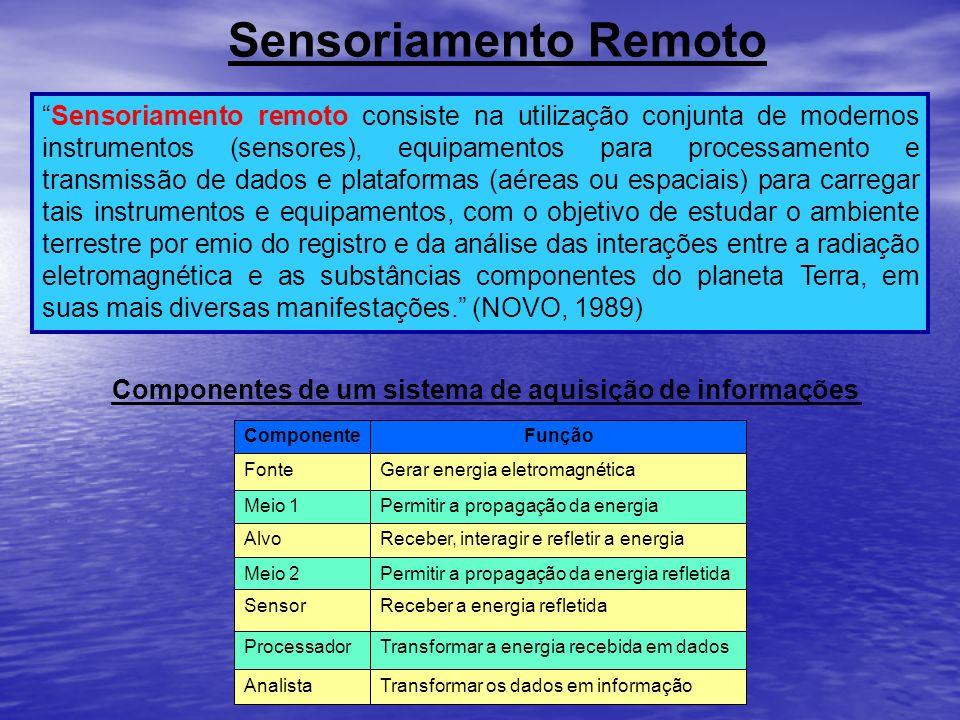 Componentes de um sistema de aquisição de informações