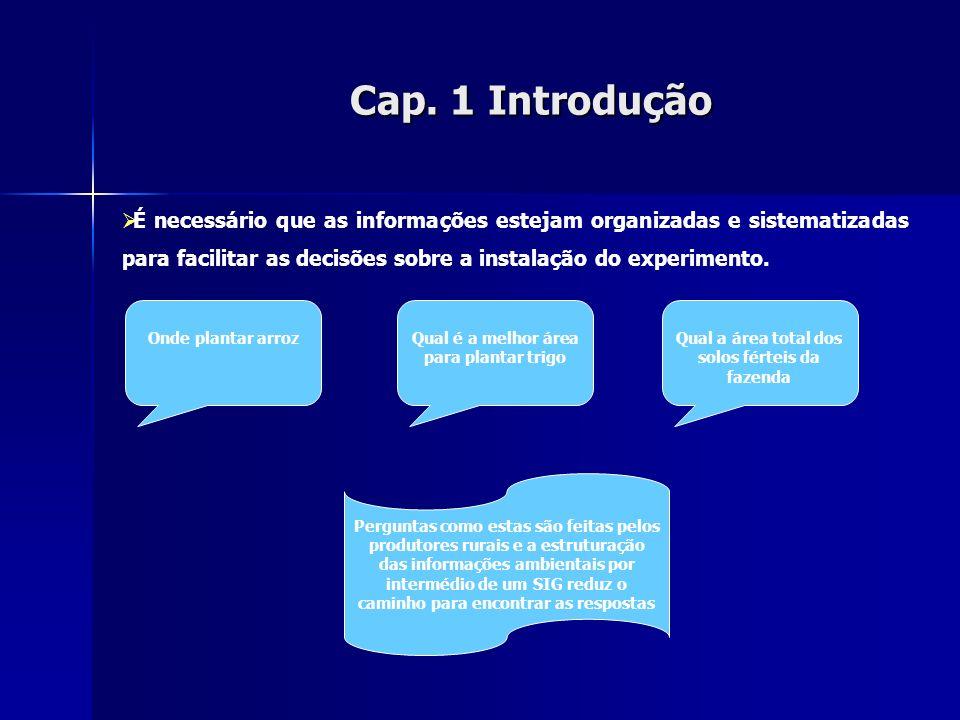 Cap. 1 Introdução É necessário que as informações estejam organizadas e sistematizadas para facilitar as decisões sobre a instalação do experimento.