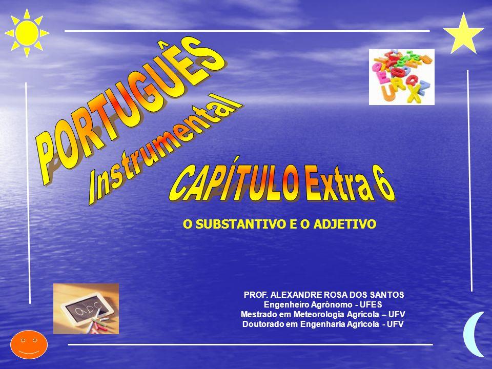 PORTUGUÊS Instrumental CAPÍTULO Extra 6 O SUBSTANTIVO E O ADJETIVO
