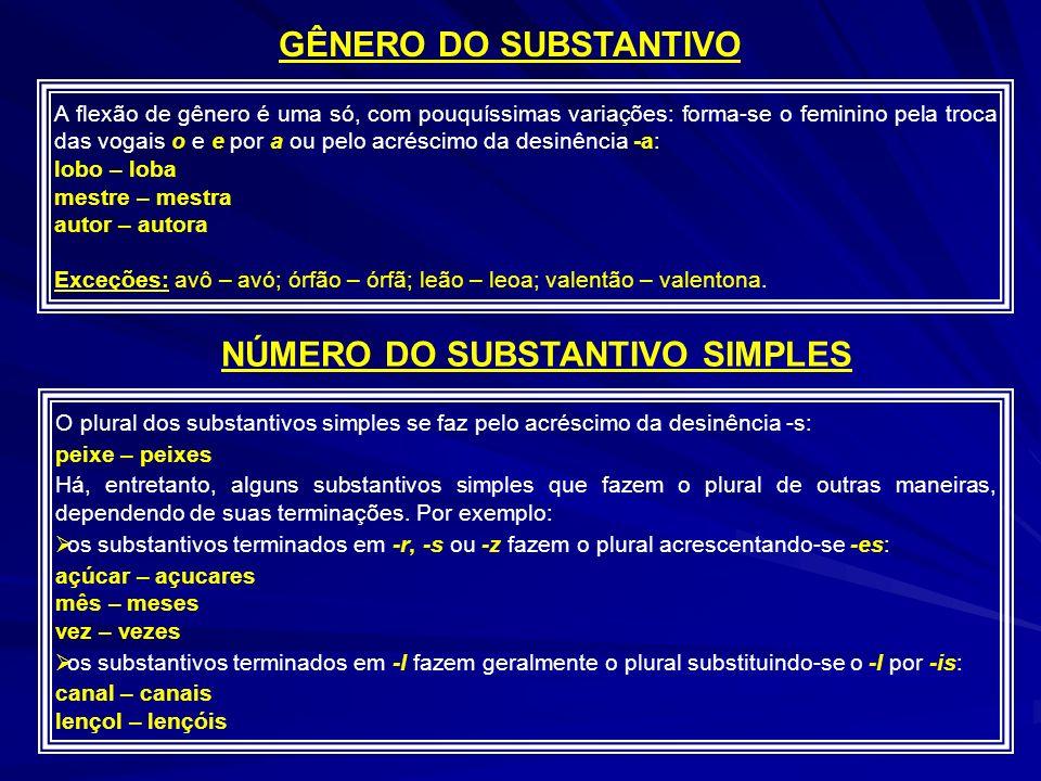 NÚMERO DO SUBSTANTIVO SIMPLES