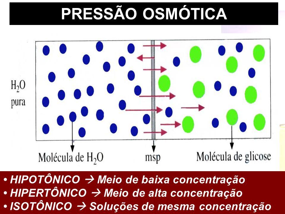 PRESSÃO OSMÓTICA • HIPOTÔNICO  Meio de baixa concentração