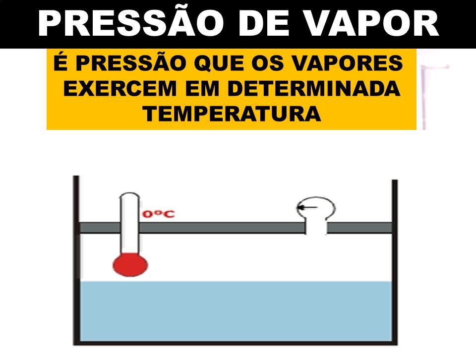 PRESSÃO DE VAPOR É PRESSÃO QUE OS VAPORES EXERCEM EM DETERMINADA