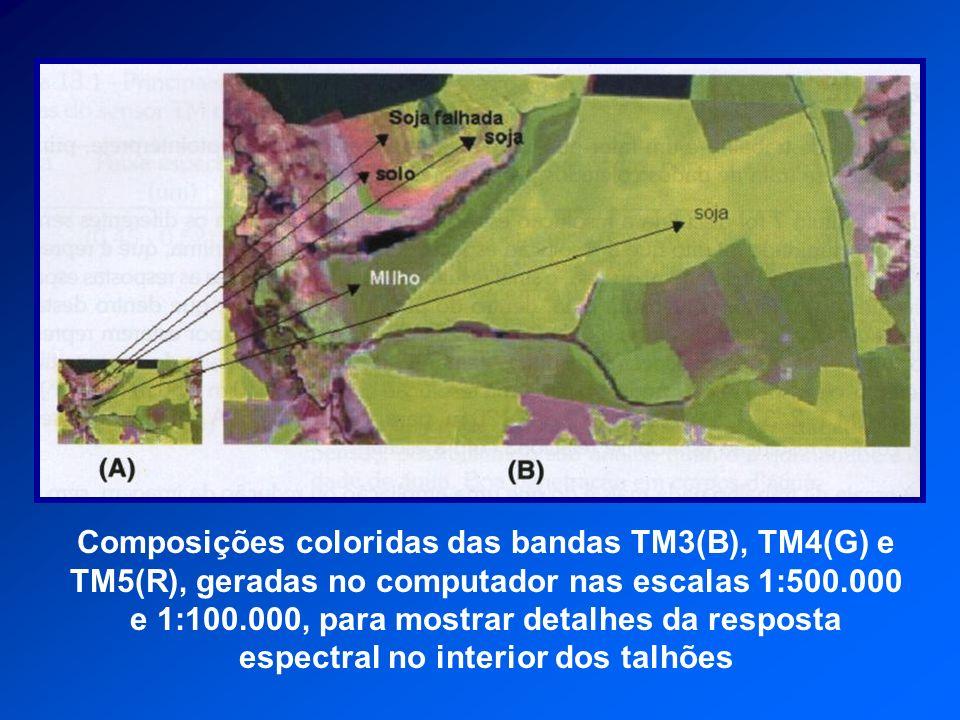 Composições coloridas das bandas TM3(B), TM4(G) e TM5(R), geradas no computador nas escalas 1:500.000 e 1:100.000, para mostrar detalhes da resposta espectral no interior dos talhões