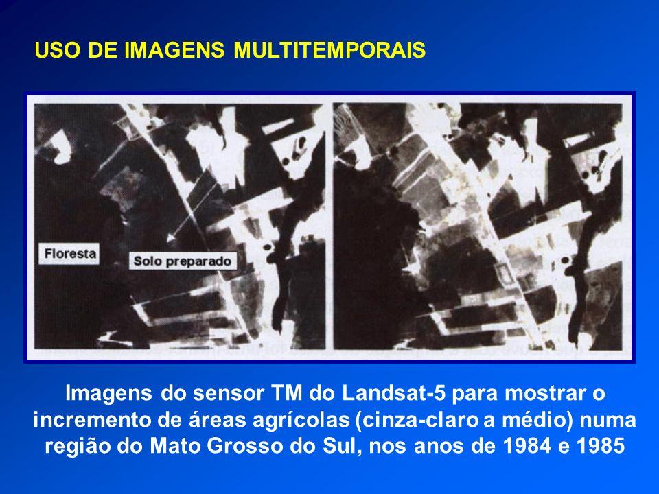 USO DE IMAGENS MULTITEMPORAIS