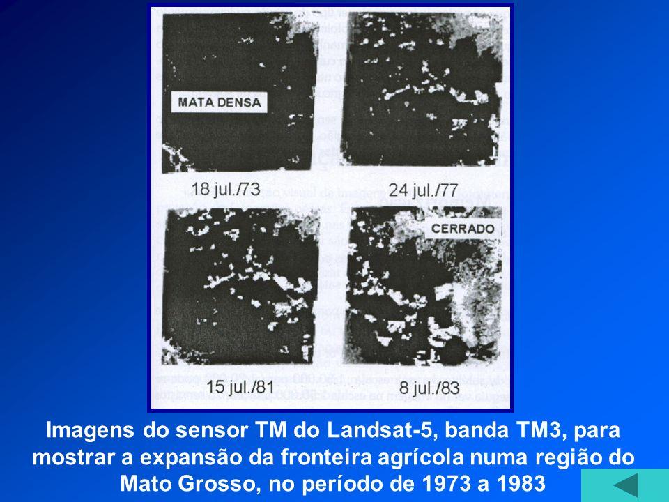 Imagens do sensor TM do Landsat-5, banda TM3, para mostrar a expansão da fronteira agrícola numa região do Mato Grosso, no período de 1973 a 1983