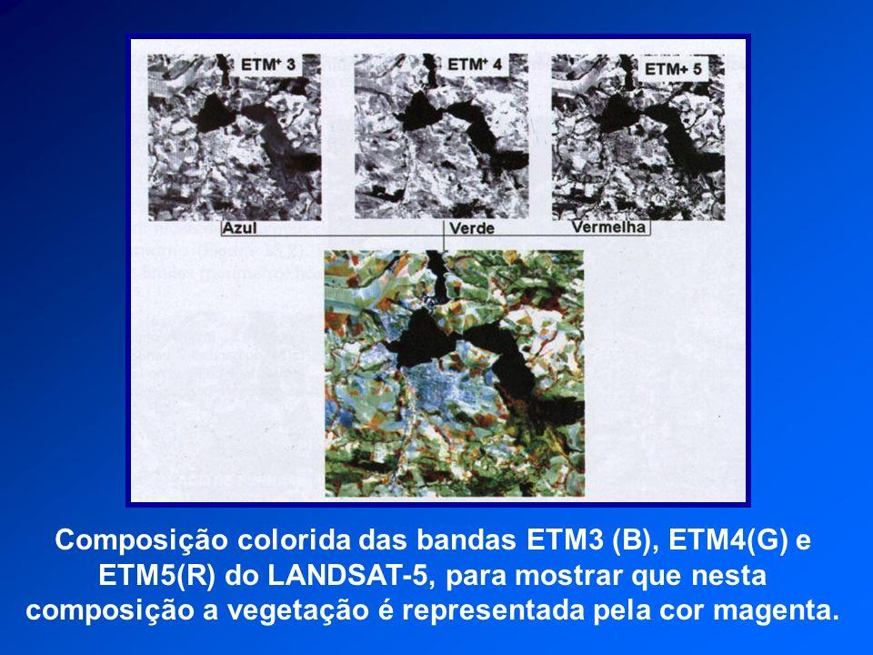 Composição colorida das bandas ETM3 (B), ETM4(G) e ETM5(R) do LANDSAT-5, para mostrar que nesta composição a vegetação é representada pela cor magenta.