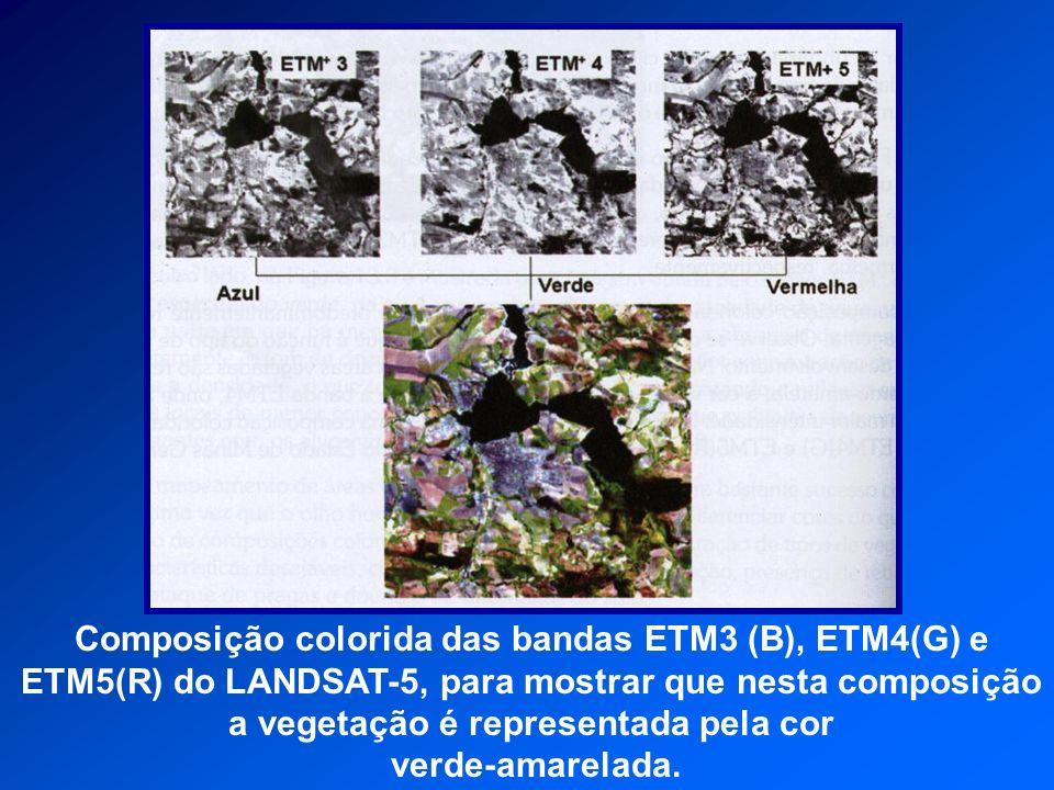 Composição colorida das bandas ETM3 (B), ETM4(G) e ETM5(R) do LANDSAT-5, para mostrar que nesta composição a vegetação é representada pela cor