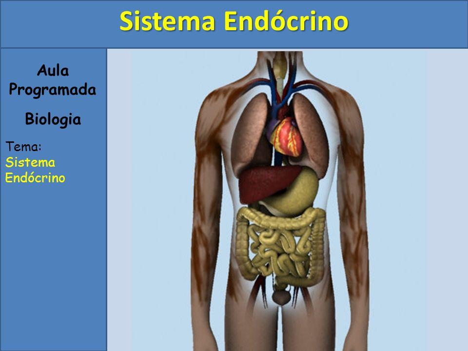Sistema Endócrino Aula Programada Biologia Tema: Sistema Endócrino
