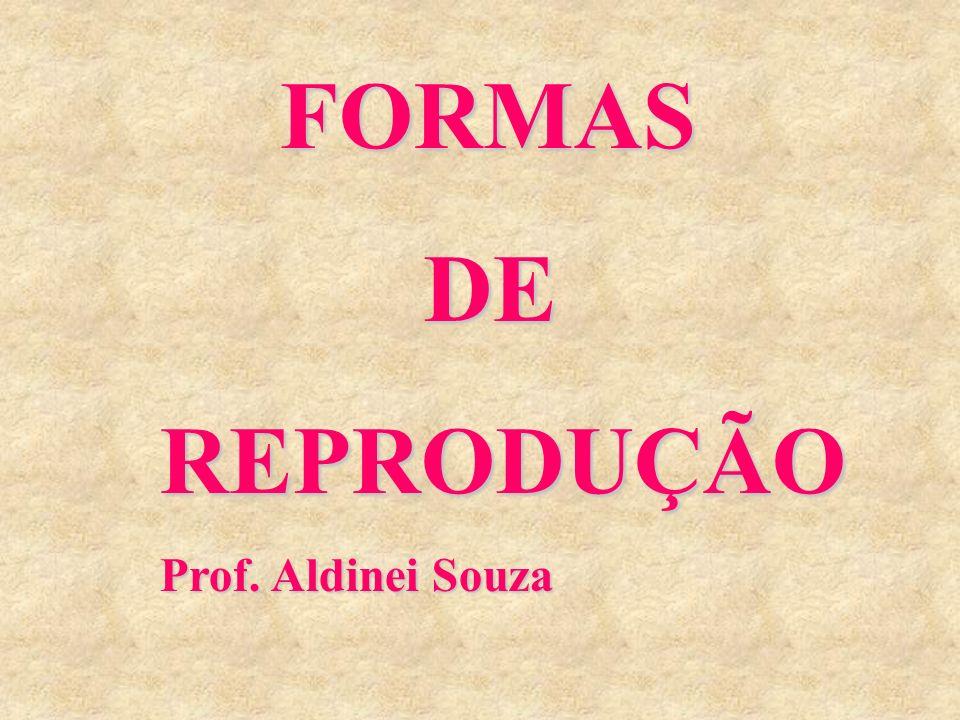 FORMAS DE REPRODUÇÃO Prof. Aldinei Souza