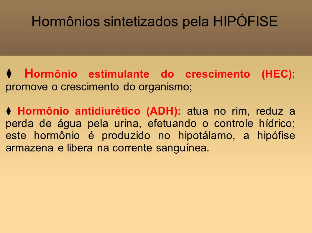 Hormônios sintetizados pela HIPÓFISE