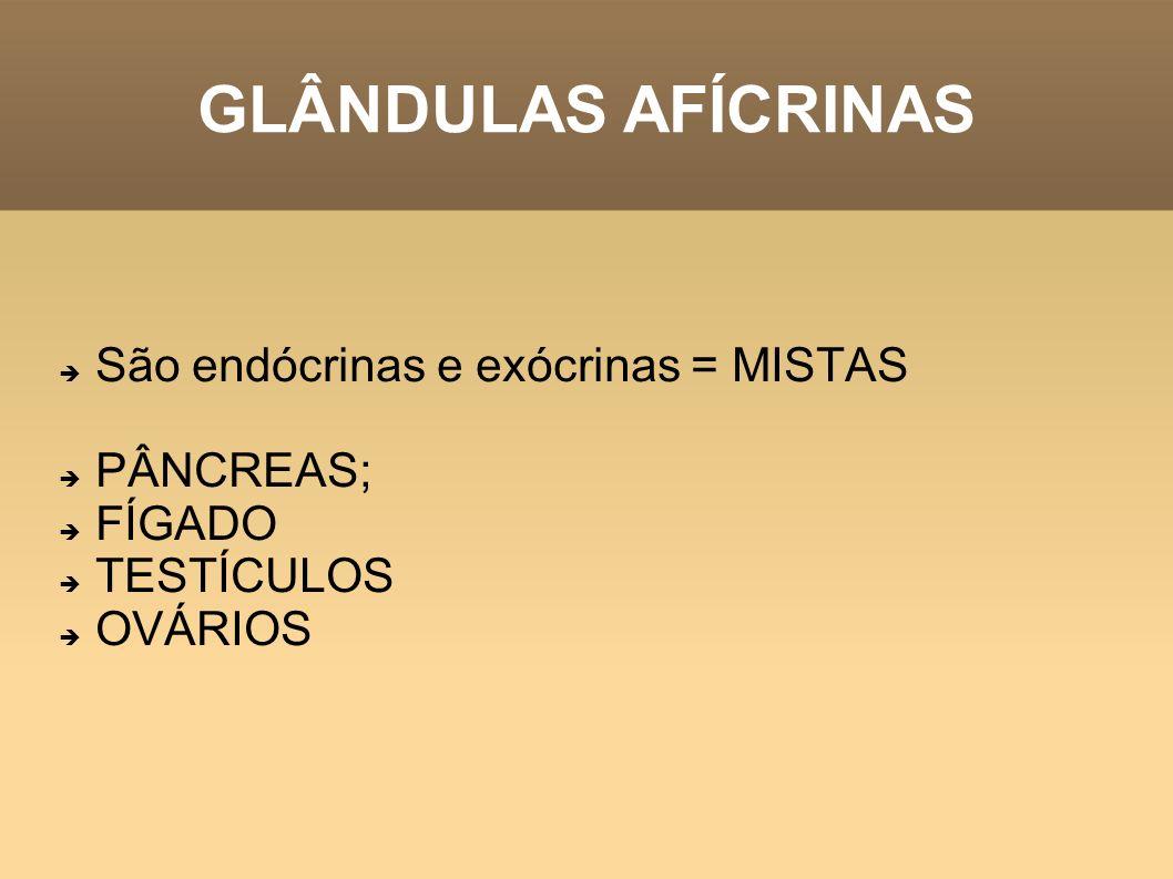 GLÂNDULAS AFÍCRINAS São endócrinas e exócrinas = MISTAS PÂNCREAS;