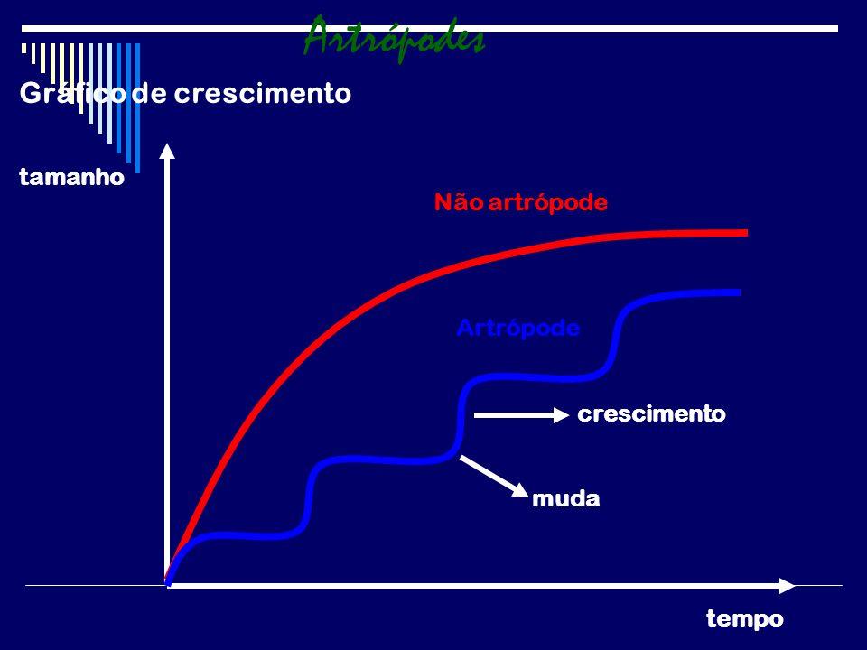 Artrópodes Gráfico de crescimento tamanho Não artrópode Artrópode