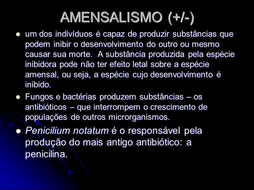 AMENSALISMO (+/-)