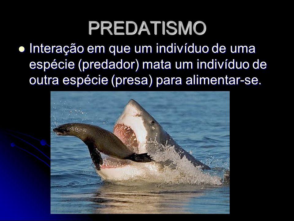 PREDATISMO Interação em que um indivíduo de uma espécie (predador) mata um indivíduo de outra espécie (presa) para alimentar-se.