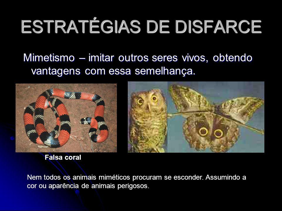 ESTRATÉGIAS DE DISFARCE