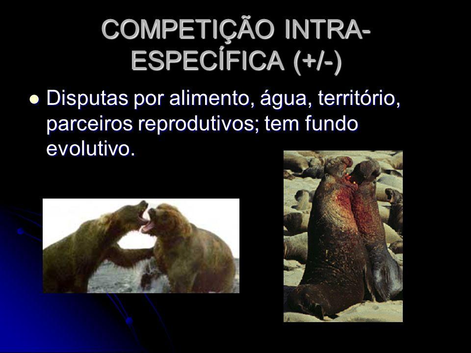 COMPETIÇÃO INTRA-ESPECÍFICA (+/-)